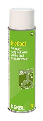 Kühlspray 400ml